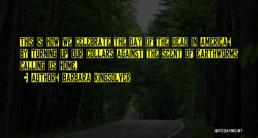 Home Is Calling Quotes By Barbara Kingsolver