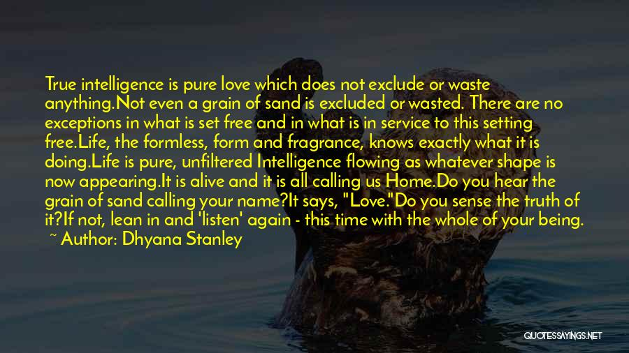 Home Is Calling Quotes By Dhyana Stanley