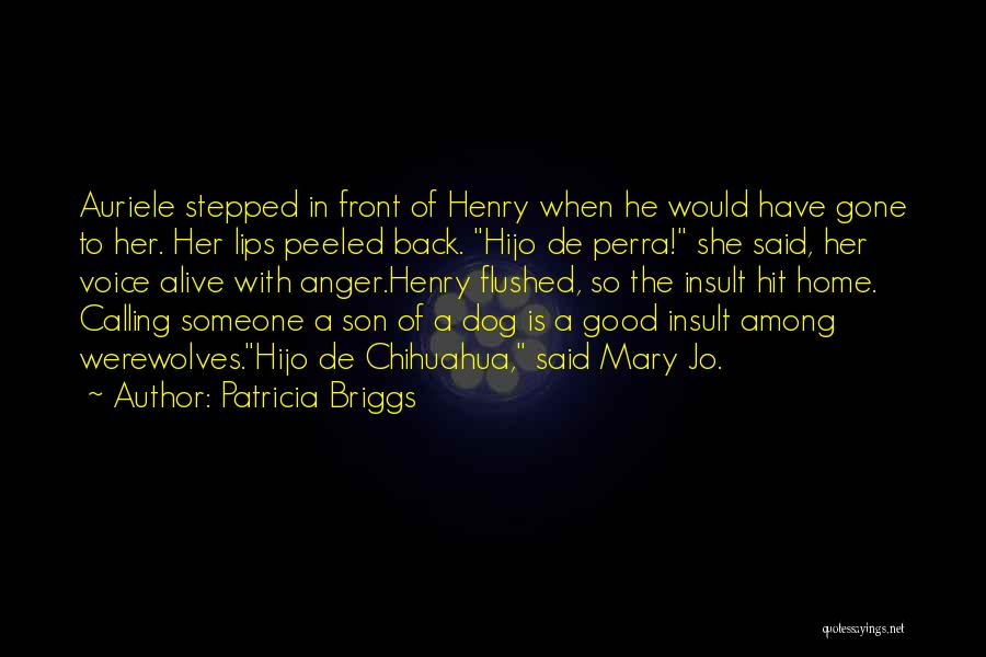 Home Is Calling Quotes By Patricia Briggs