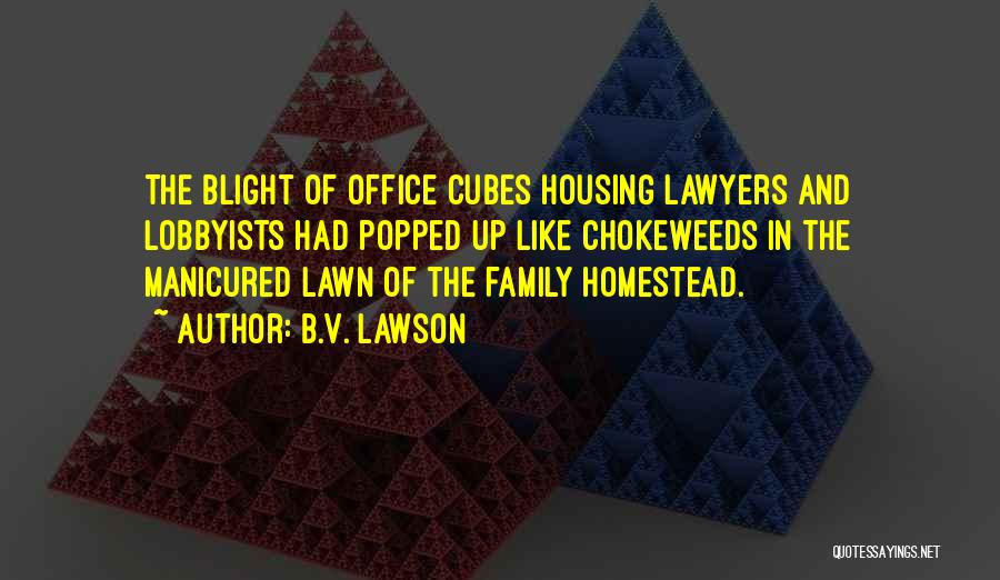 Homestead Quotes By B.V. Lawson