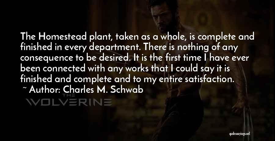 Homestead Quotes By Charles M. Schwab