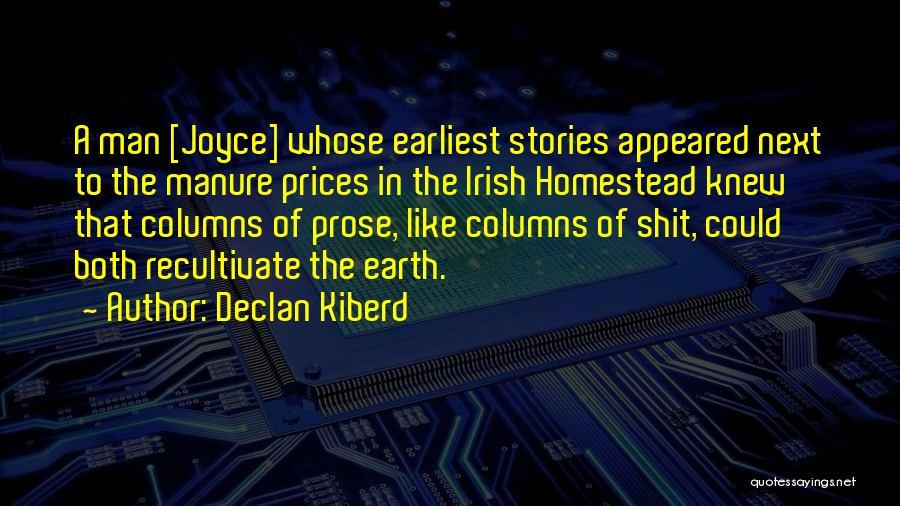 Homestead Quotes By Declan Kiberd