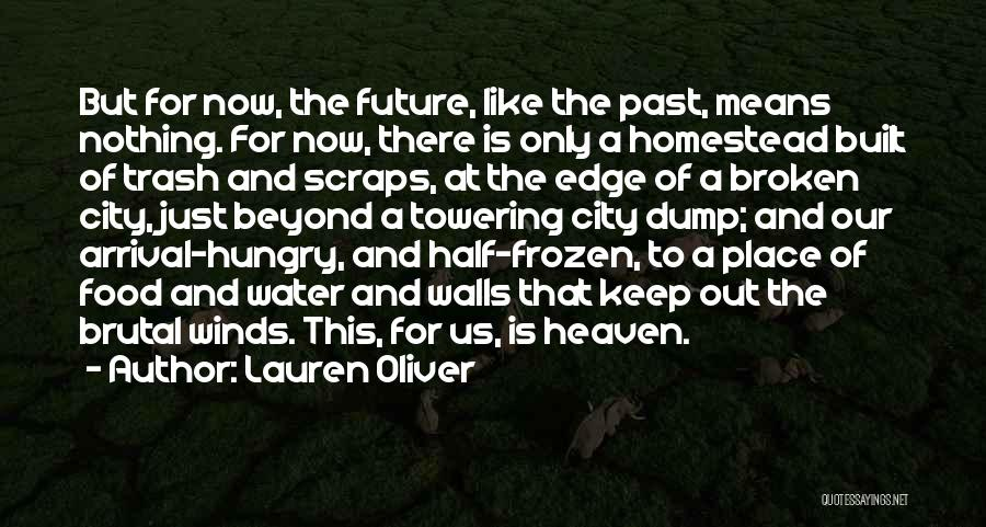 Homestead Quotes By Lauren Oliver
