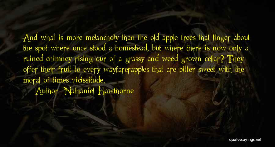 Homestead Quotes By Nathaniel Hawthorne