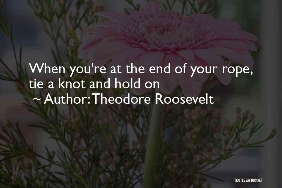 Hope And Hope Quotes By Theodore Roosevelt