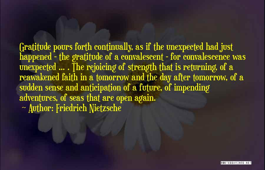 Hope For Illness Quotes By Friedrich Nietzsche