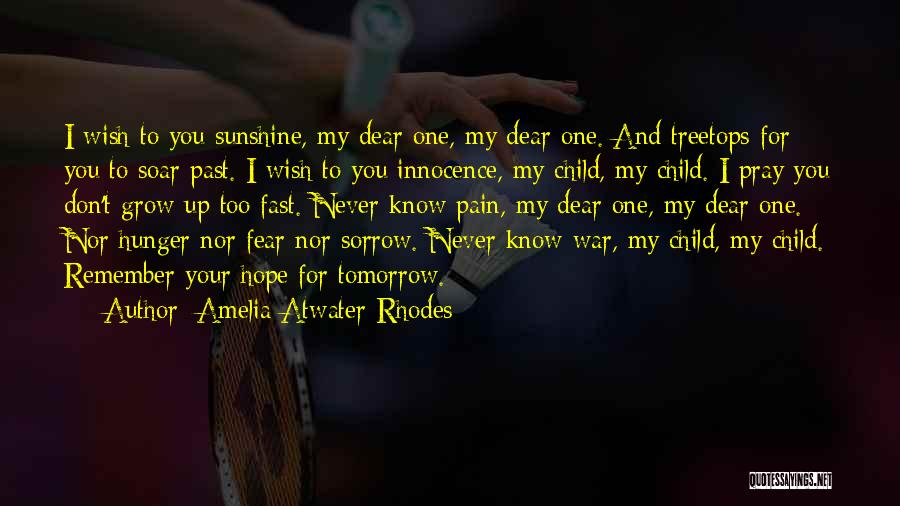 Hope For Tomorrow Quotes By Amelia Atwater-Rhodes