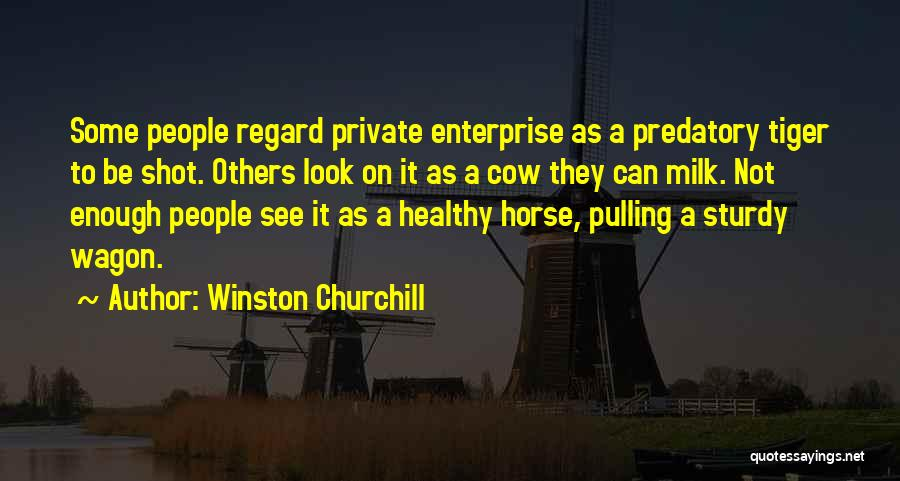 Horse And Wagon Quotes By Winston Churchill
