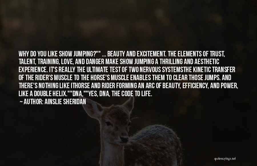 Horse Rider Quotes By Ainslie Sheridan