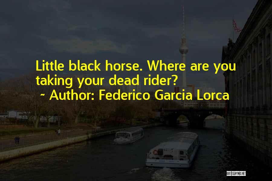 Horse Rider Quotes By Federico Garcia Lorca