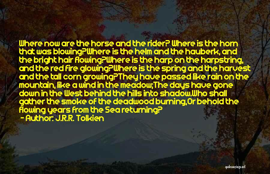Horse Rider Quotes By J.R.R. Tolkien