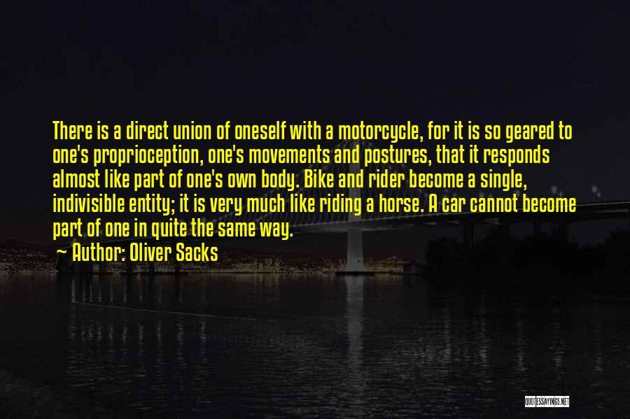 Horse Rider Quotes By Oliver Sacks