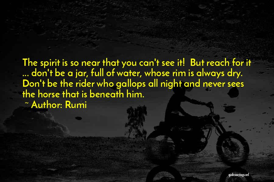 Horse Rider Quotes By Rumi