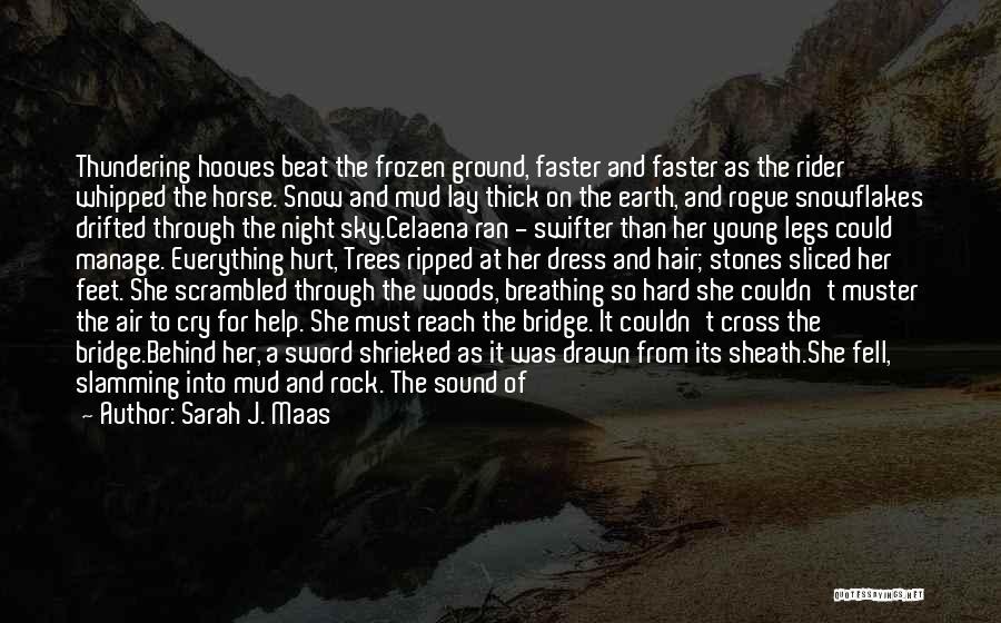 Horse Rider Quotes By Sarah J. Maas