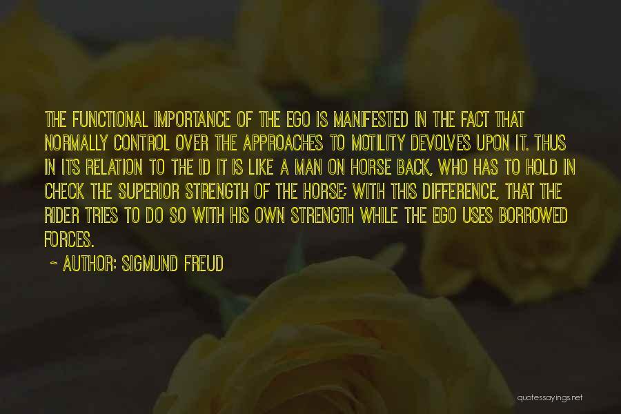 Horse Rider Quotes By Sigmund Freud