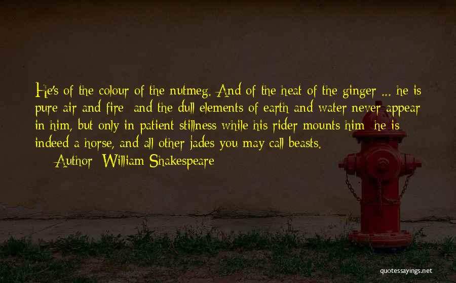 Horse Rider Quotes By William Shakespeare