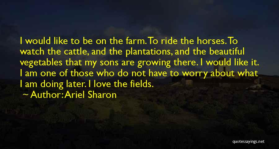 Horses And Quotes By Ariel Sharon