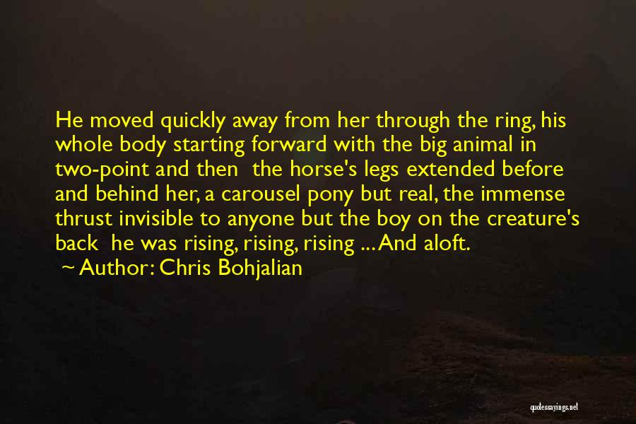 Horses And Quotes By Chris Bohjalian
