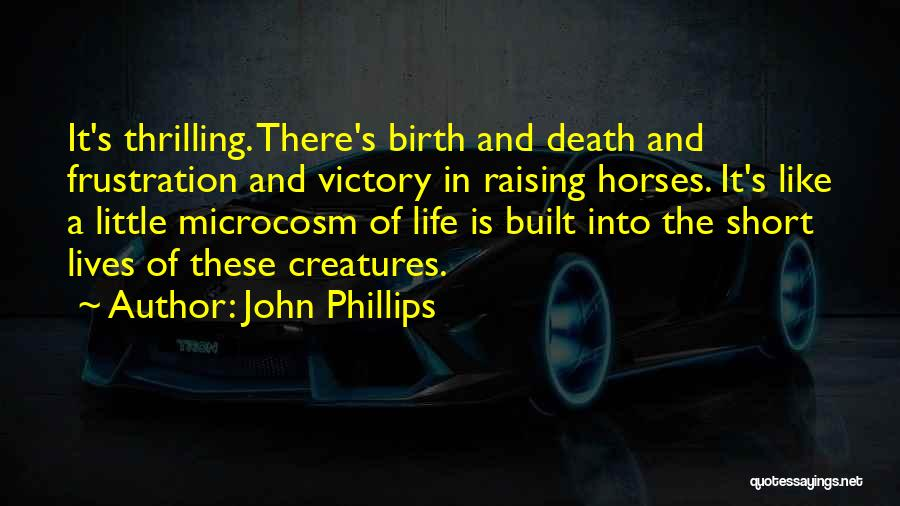 Horses And Quotes By John Phillips