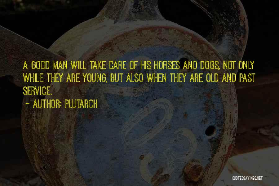 Horses And Quotes By Plutarch
