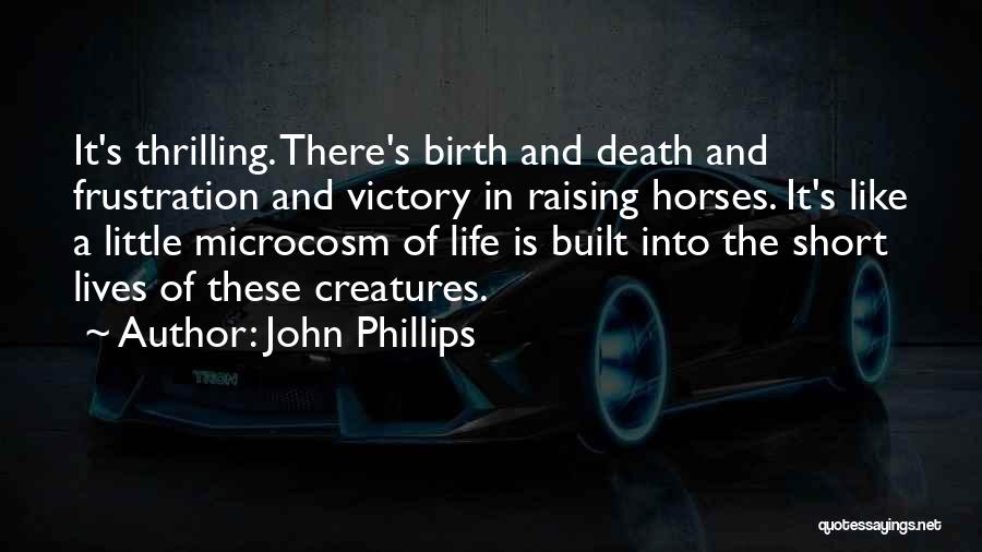 Horses Quotes By John Phillips