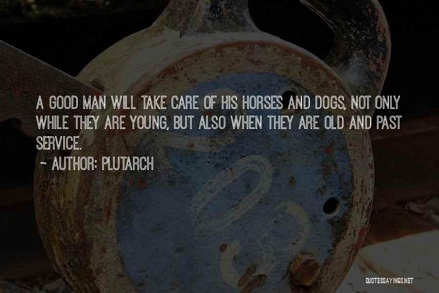 Horses Quotes By Plutarch