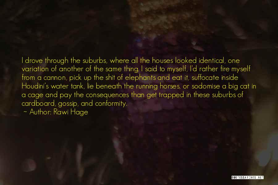 Horses Quotes By Rawi Hage
