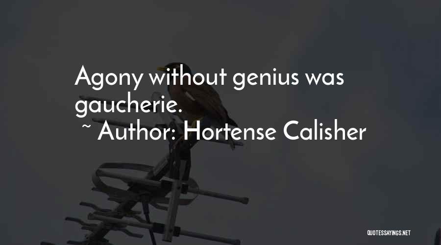 Hortense Calisher Quotes 519868