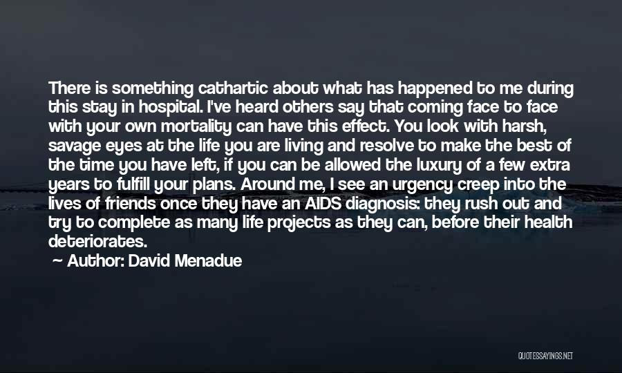 Hospital Plans Quotes By David Menadue