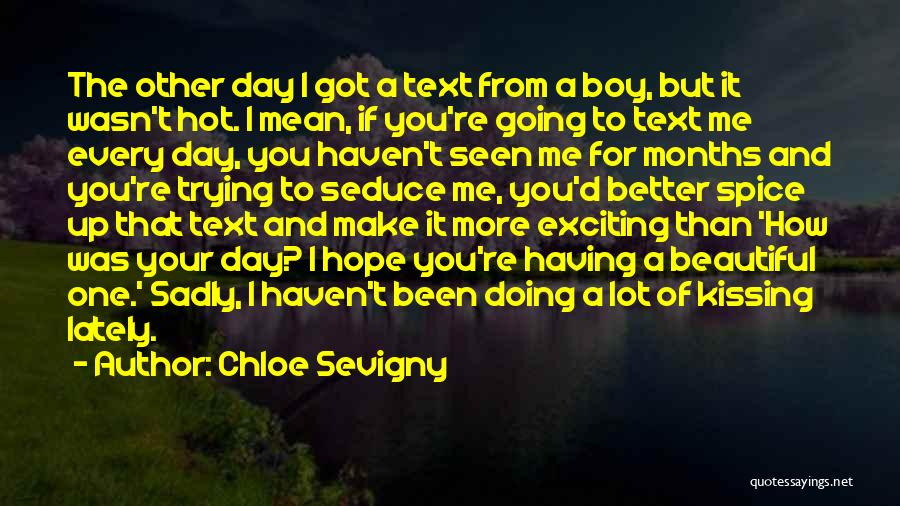 Hot And Beautiful Quotes By Chloe Sevigny