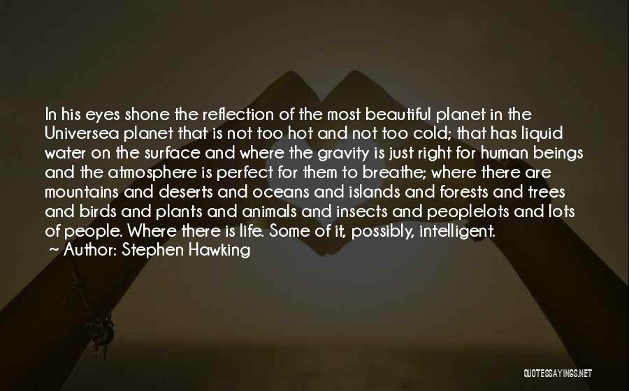 Hot And Beautiful Quotes By Stephen Hawking