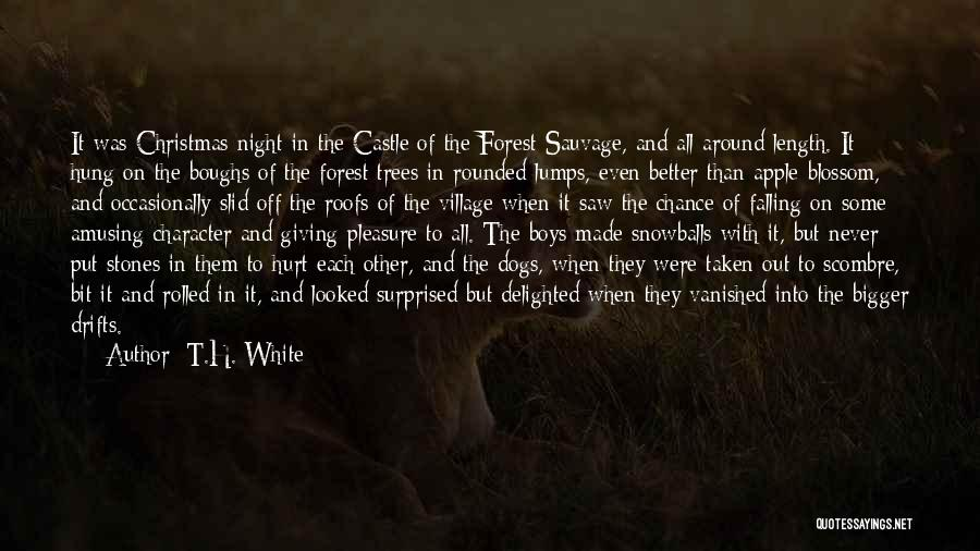 Hot And Beautiful Quotes By T.H. White