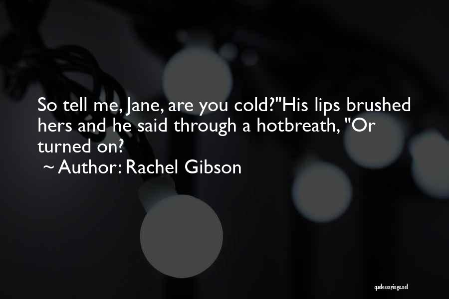 Hot N Bothered Quotes By Rachel Gibson