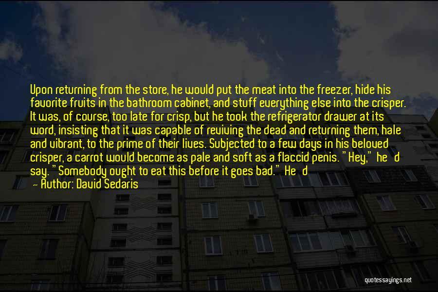 Hot Stuff Quotes By David Sedaris