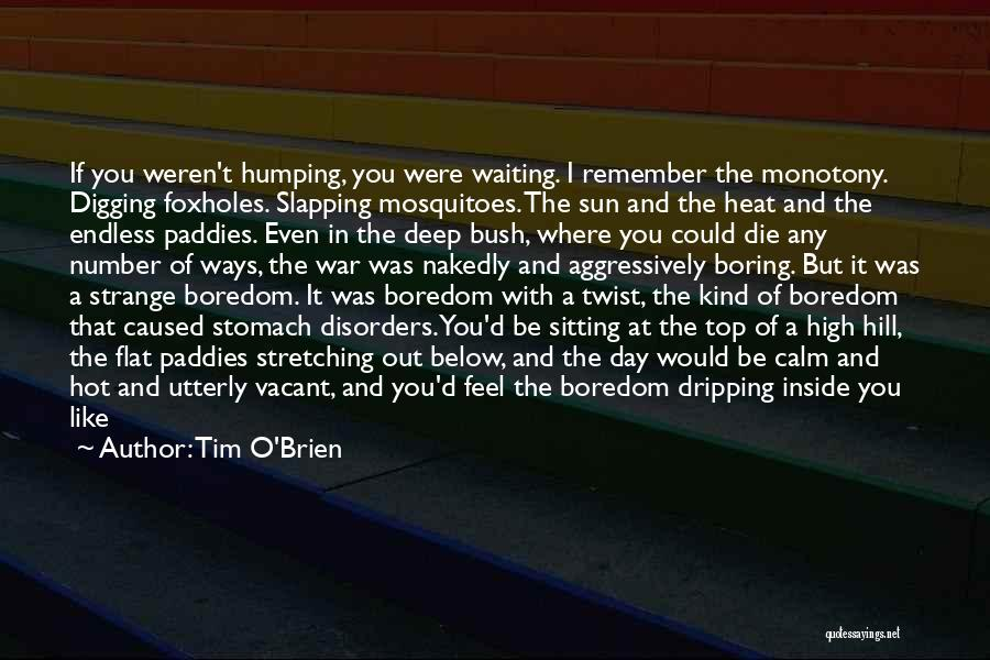 Hot Stuff Quotes By Tim O'Brien