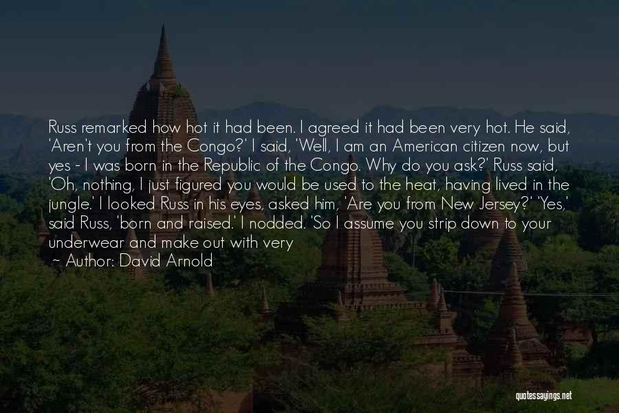 Hot Tubs Quotes By David Arnold