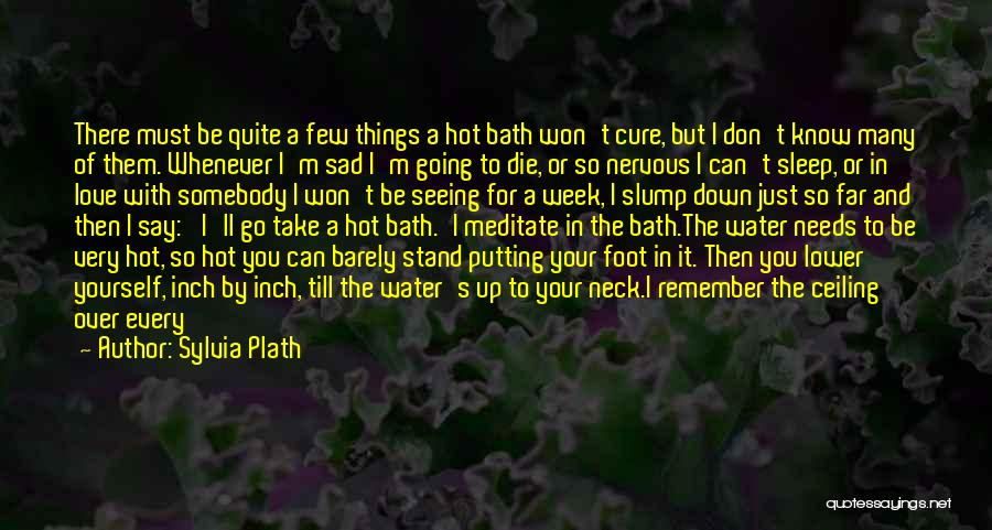 Hot Tubs Quotes By Sylvia Plath