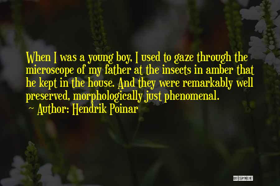 House Amber Quotes By Hendrik Poinar