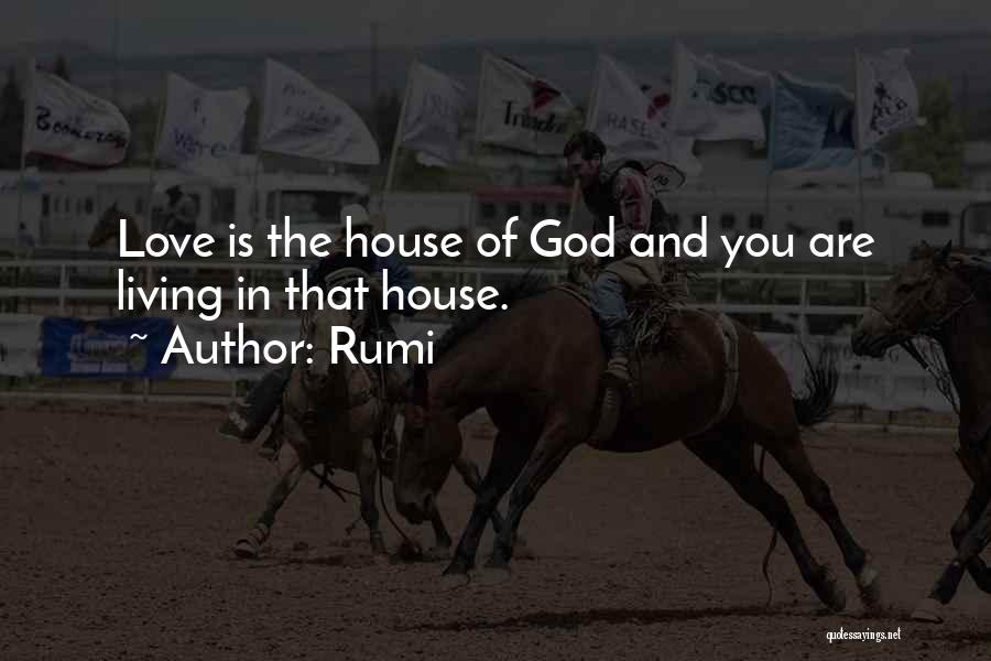 House And Love Quotes By Rumi