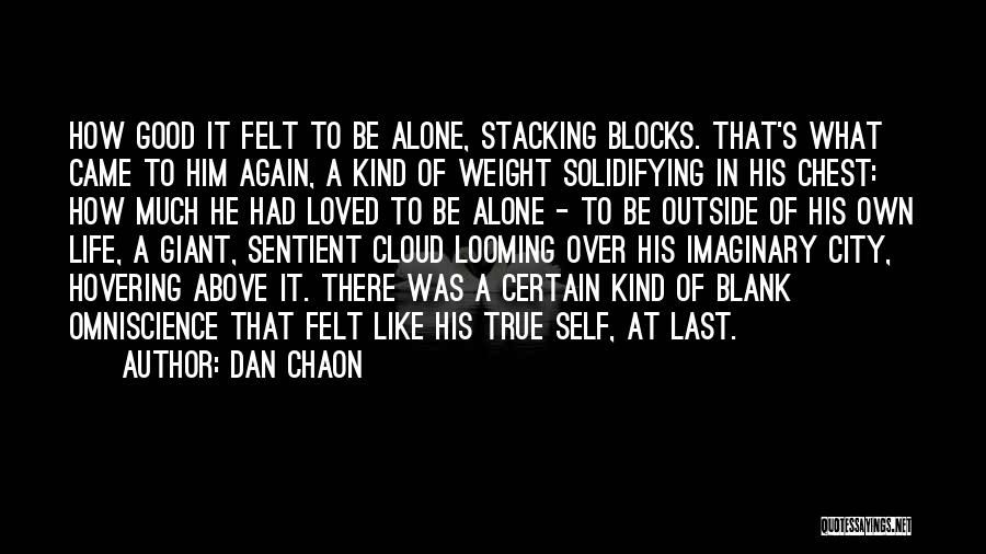 Hovering Quotes By Dan Chaon