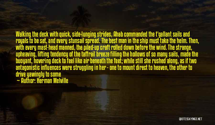 Hovering Quotes By Herman Melville