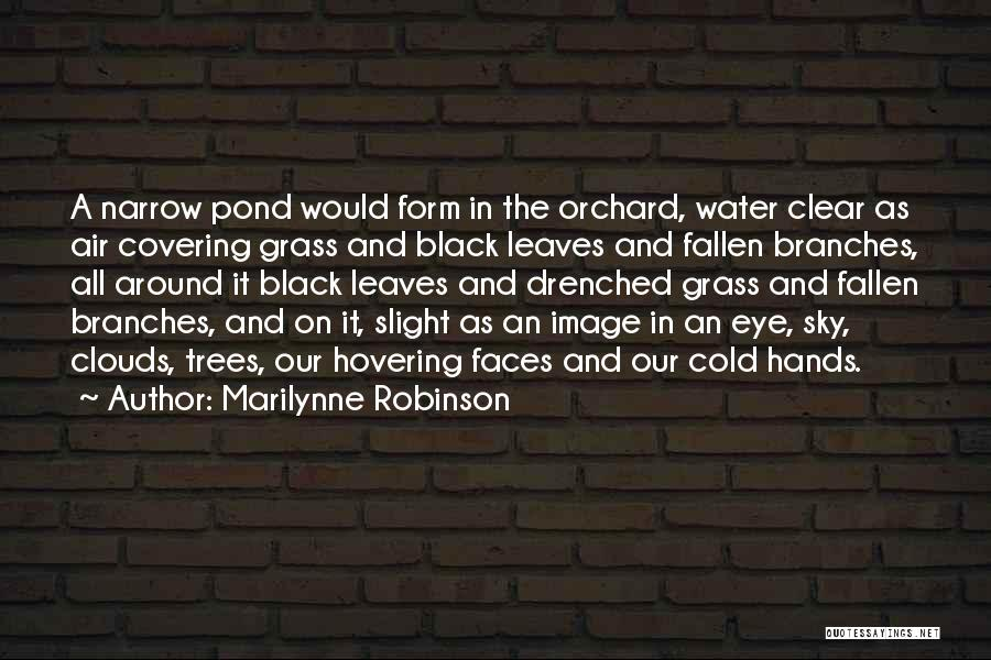 Hovering Quotes By Marilynne Robinson