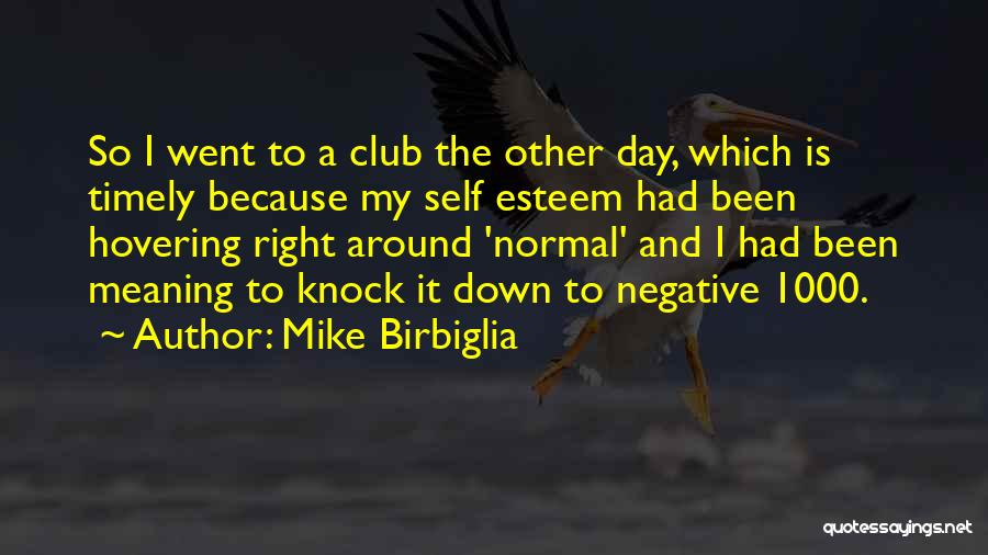 Hovering Quotes By Mike Birbiglia