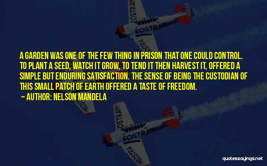 How Does Your Garden Grow Quotes By Nelson Mandela
