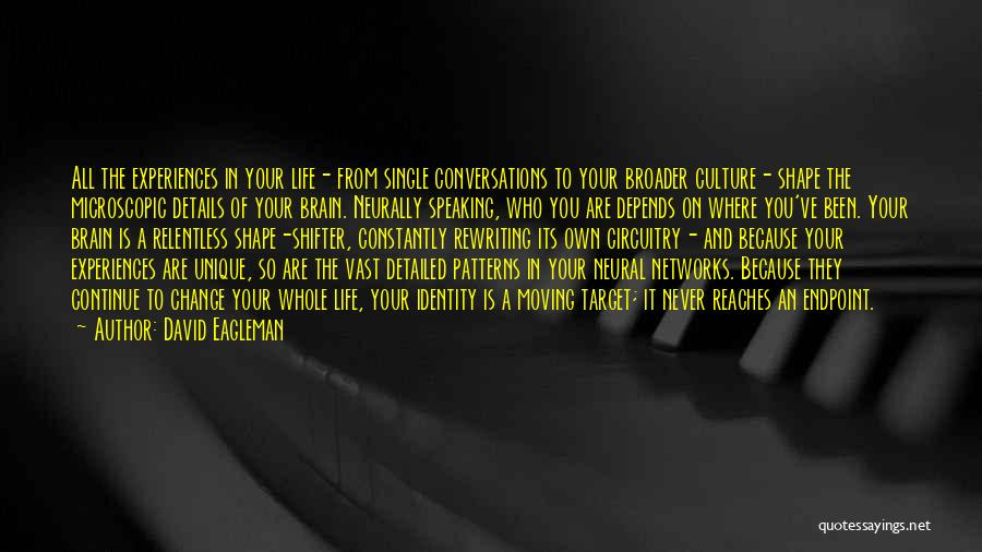 How Experiences Shape Us Quotes By David Eagleman