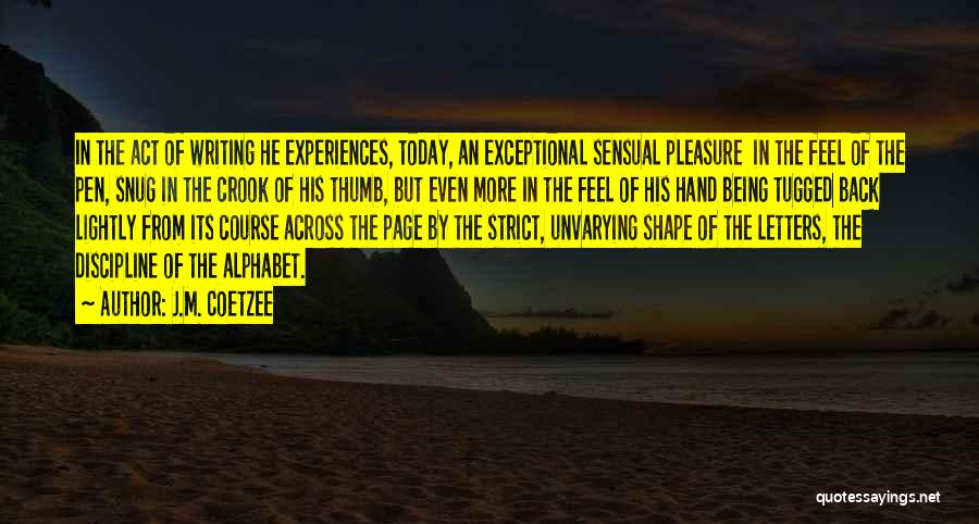 How Experiences Shape Us Quotes By J.M. Coetzee