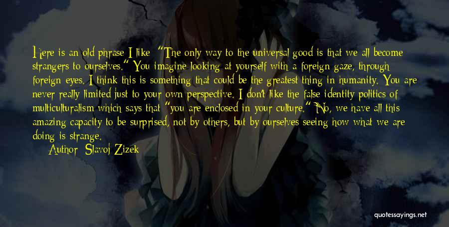How Good Looking You Are Quotes By Slavoj Zizek