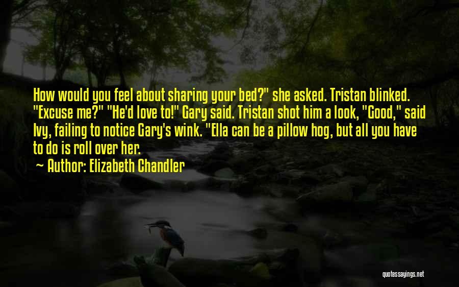 How Good You Look Quotes By Elizabeth Chandler