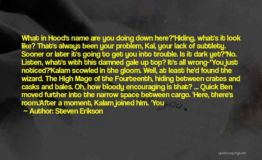 How Good You Look Quotes By Steven Erikson