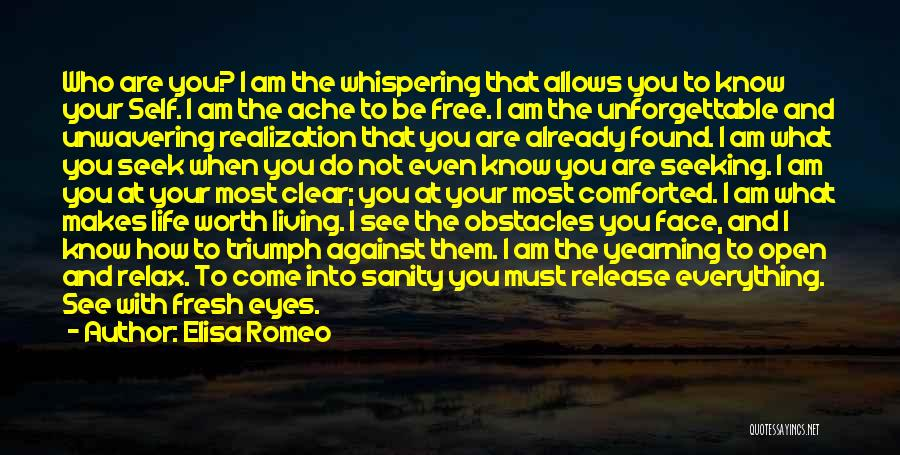 How I Feel When I See You Quotes By Elisa Romeo